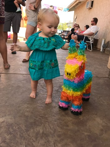 Checking out the surviving donkey piñata.