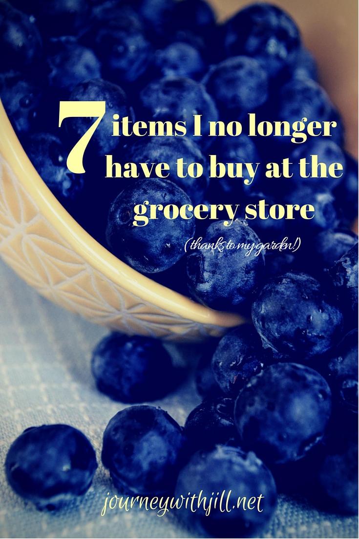 7 Items I no longer have to buy at the grocery store