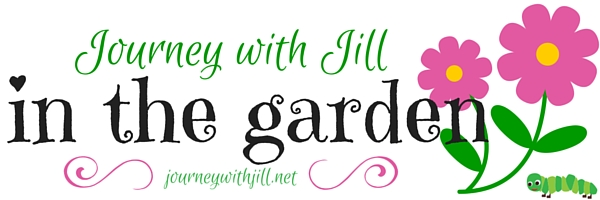 Journey with Jill in the Garden