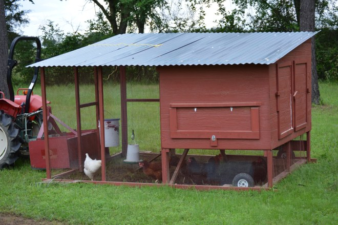 Our Chicken House | Journey with Jill
