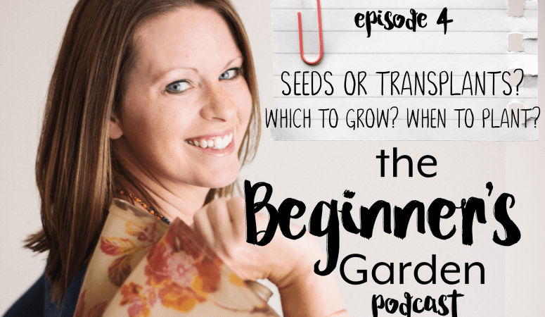 Seeds or Transplants? Which to Grow? When to Plant?