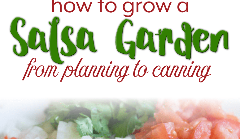 How to Grow a Salsa Garden from Planning to Canning