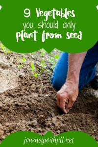 9 vegetables only plant from seed