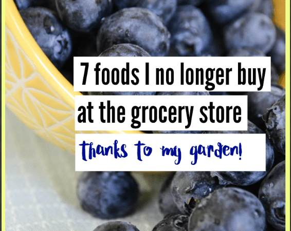 7 foods I no longer buy at the grocery store