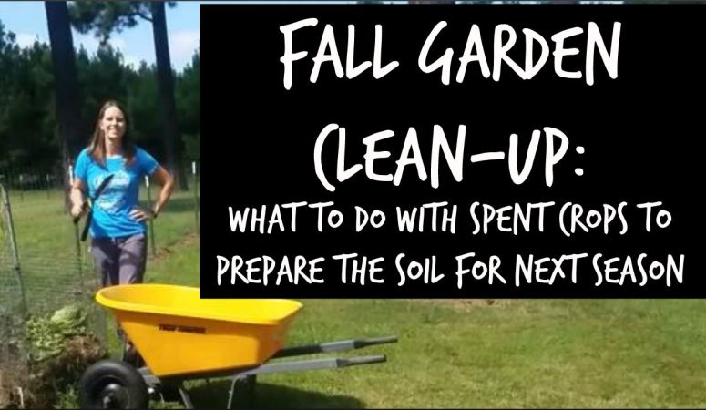 End of season garden clean-up that will help get next year's garden started out right {The Beginner's Garden Podcast}