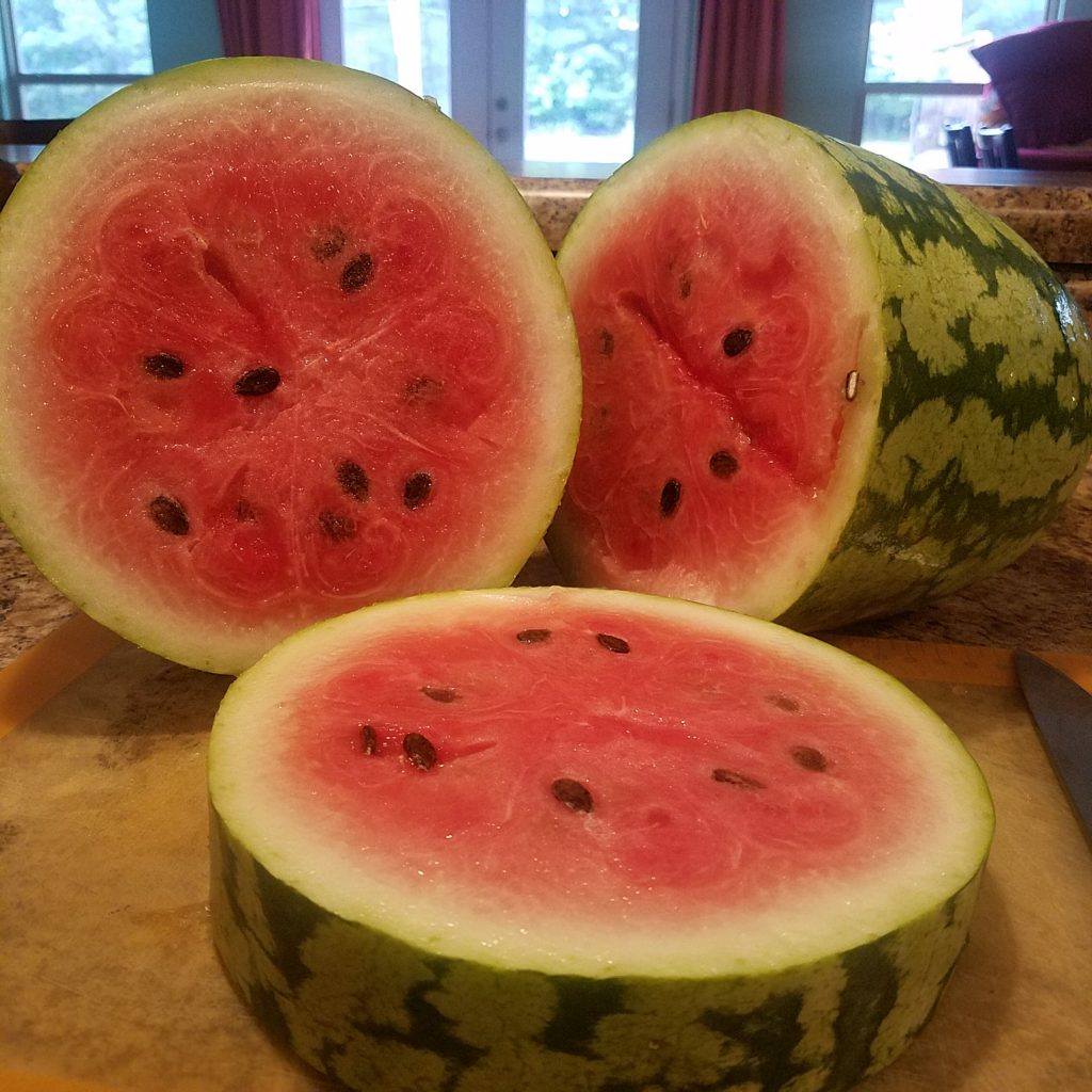 ripe watermelon slices