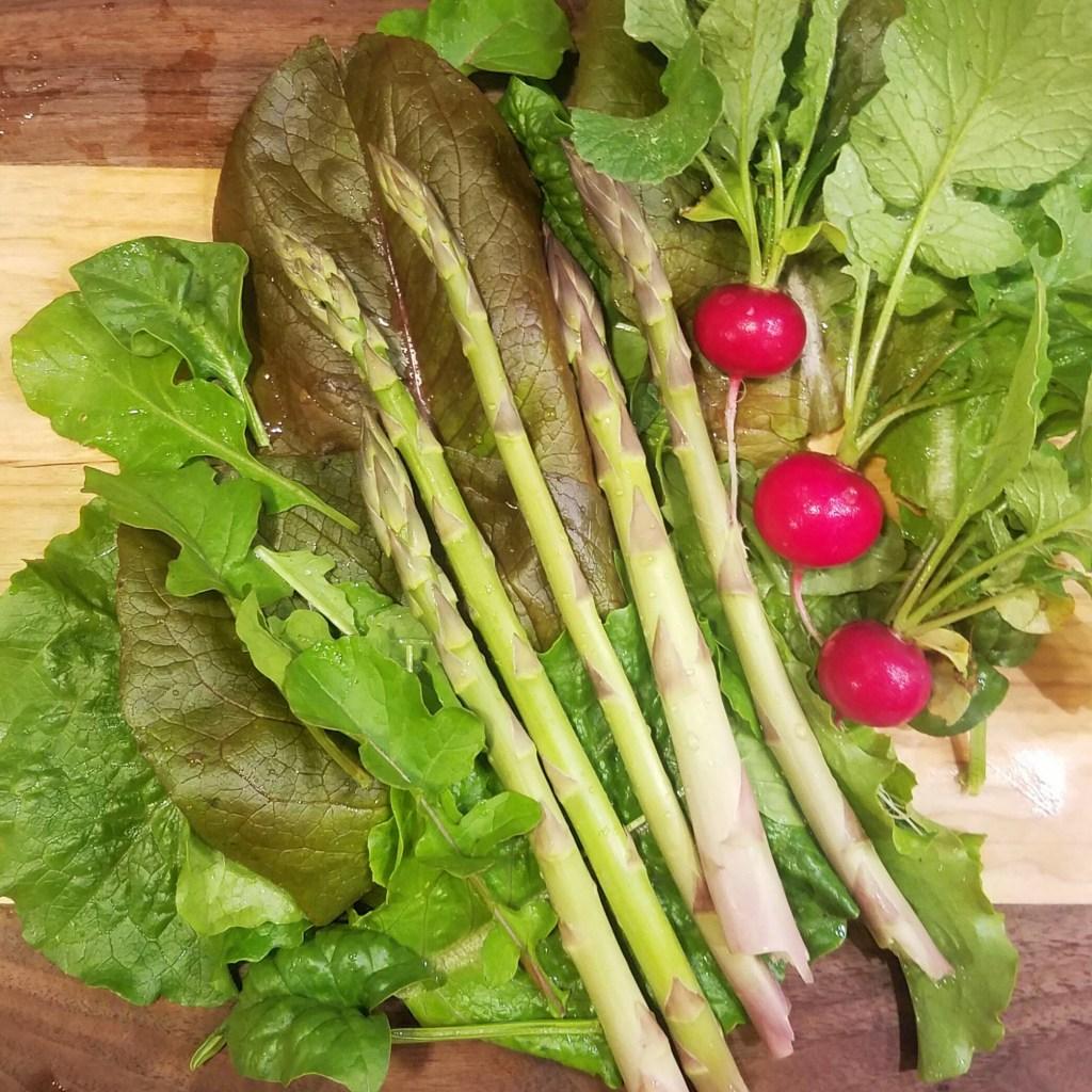 asparagus, radish, and lettuce