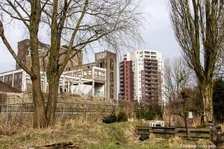 groningen-kostverloren-tuin in de stad-nldoet-24