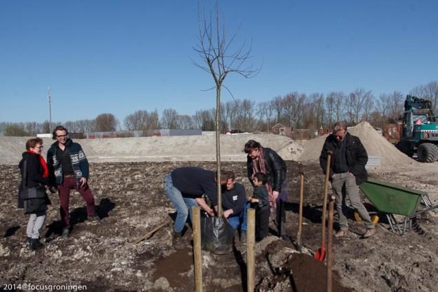 oosterparkwijk-mientoentje-compost en bomenplant-9