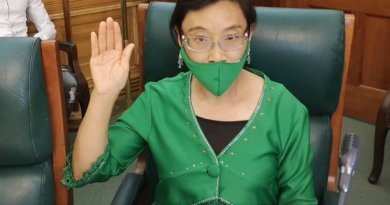 Real-life-Facts-about-Chinese-Xiaomei-Havard-new-ANC-Member-of-Parliament