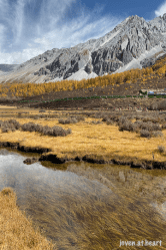IMG_1544-20191023-daocheng-yading-nature-reserve-sichuan