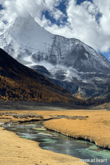 IMG_1547-20191023-daocheng-yading-nature-reserve-sichuan