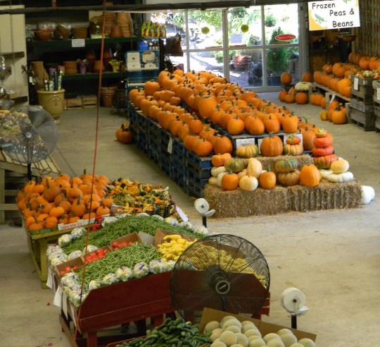 One of the Farmers' Markets Nearby