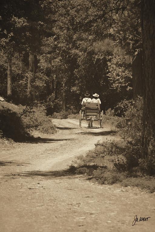 wagon 6