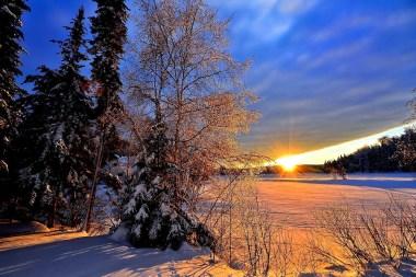 winter-landscape-1167019_1280