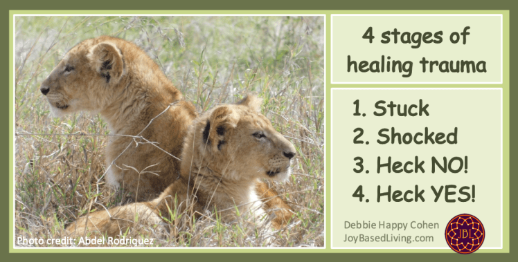 lion cubs and 4 stages of healing trauma joy-based living photo by Abdel Rodriquez