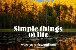 Simple-things-of-life