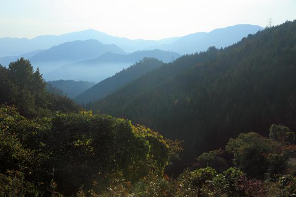 hujiwakara