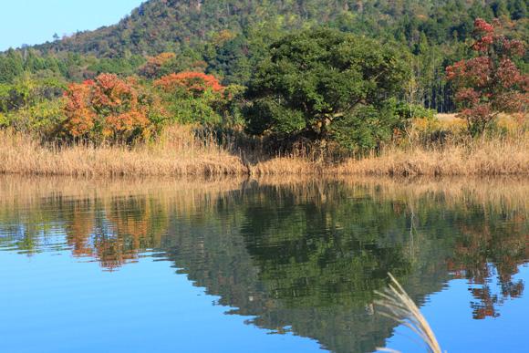 kabutoyamakara17