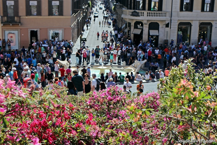 Flowers at the Spanish Steps