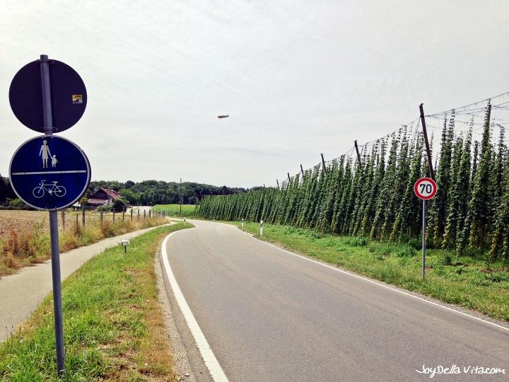 Bike Tour Friedrichshafen Tettnang Eriskirch
