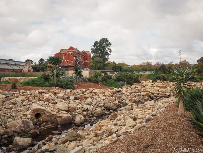 Adelaide Botanic Garden Fall May JoyDellaVita