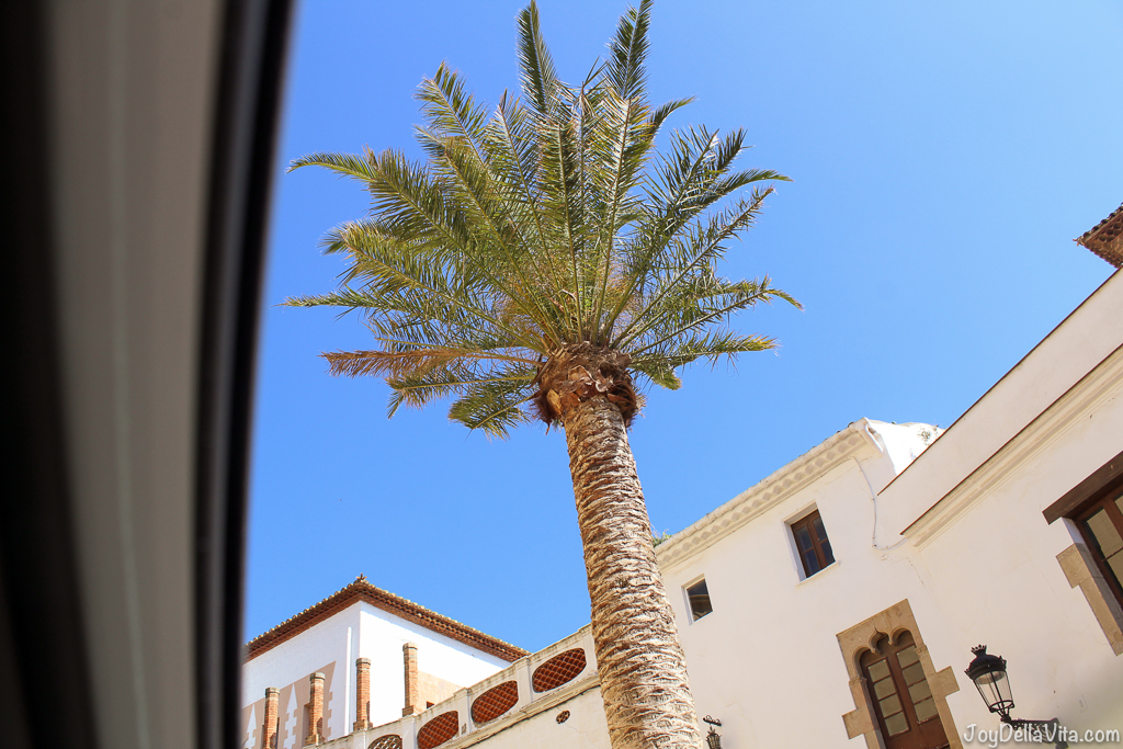 Palm Tree in Sitges