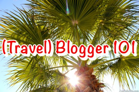 Travel Blogger 101 Business of Blogging Travelblog JoyDellaVita