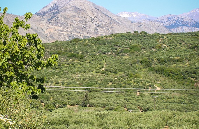 Land Rover Experience Greece Tour 3 Crete Travelblog JoyDellaVita