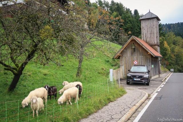volvo xc90 alpine adventure travel blog joydellavita in eichenberg near bregenz in vorarlberg