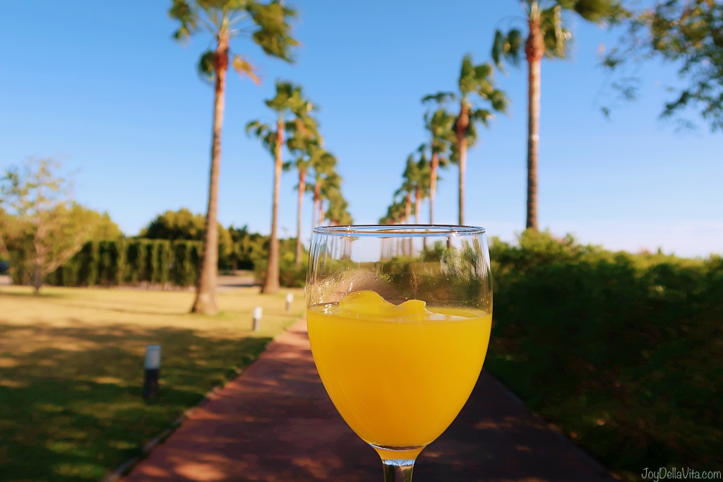 Orange Juice Tasting BURRIANA Valencia TravelBlog JoyDellaVita