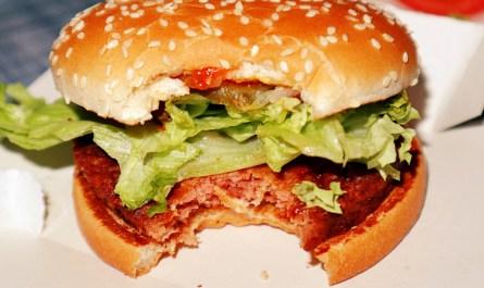 Big Vegan TS McDonalds Germany