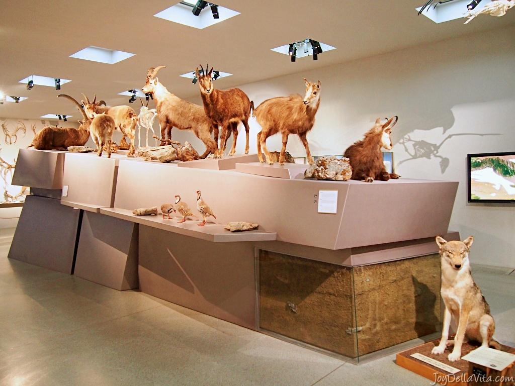 Liechtenstein National Museum in Vaduz