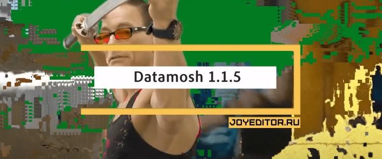 Datamosh 1.1.5