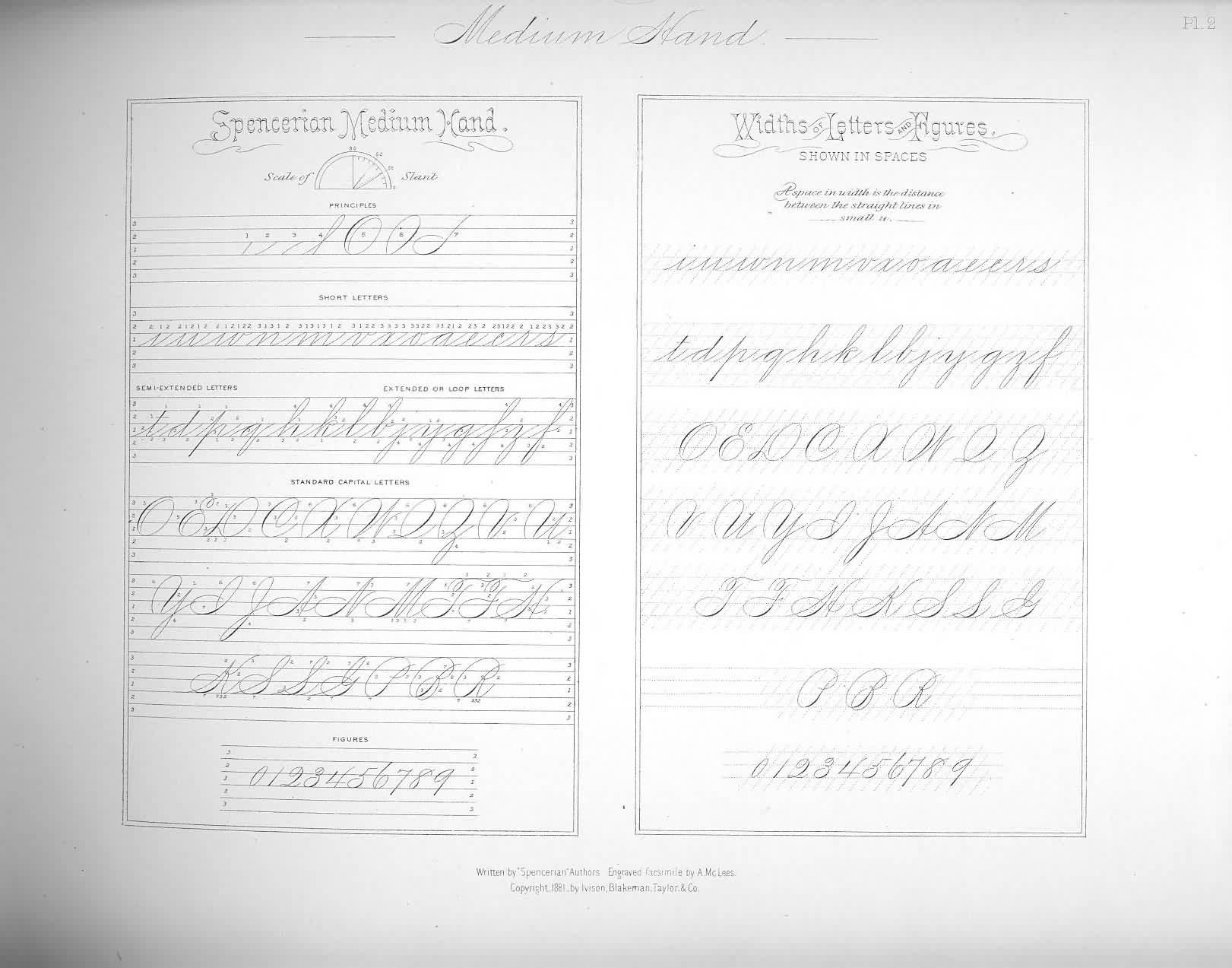 Script Handwriting Practice Sheets