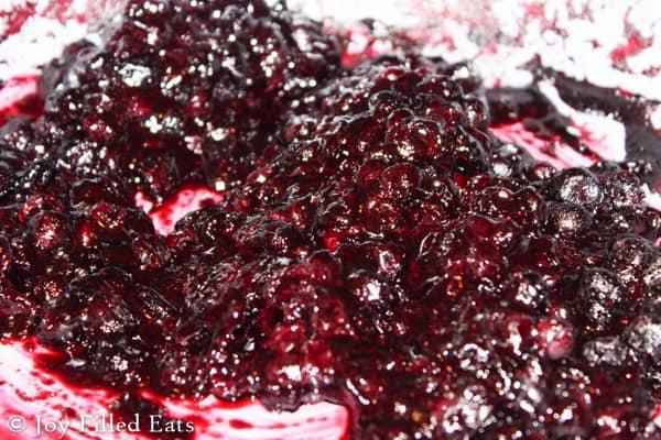 Blueberry Cheesecake Ice Cream - Sugar Free, Gluten/Grain Free, Low Carb, THM S