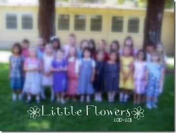Little flowers blur