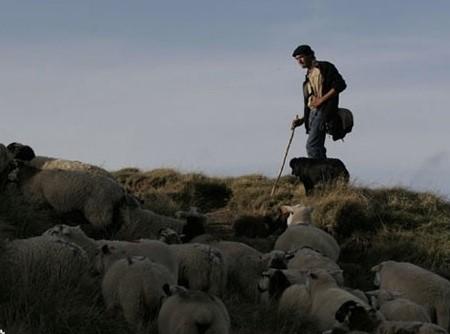 Les bergers de l'Ailleurs