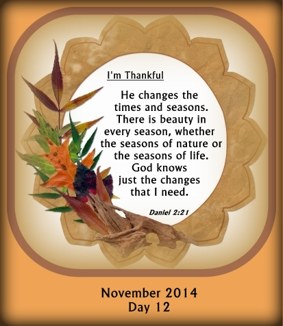 There is beauty in every season, whether the seasons of nature or the seasons of life.  God knows the changes that I need.