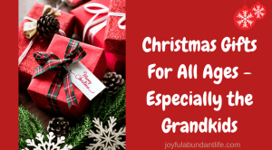 Christmas Gifts for All Ages – Especially the Grandkids