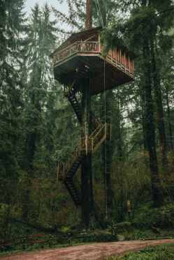 A wooden treehouse stands protected in a forest. This is one way to visualize your boundaries. If you would like support in learning how to set boundaries, please reach out. I am an empath therapist in Berkeley, and would be happy to help.