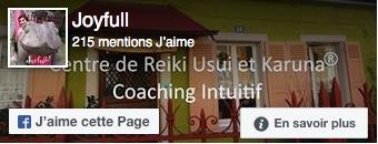 page Facebook de Joyfull