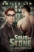 Review: Solid as Stone by Amylea Lyn