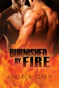 Review: Burnished by Fire by Andrew Grey