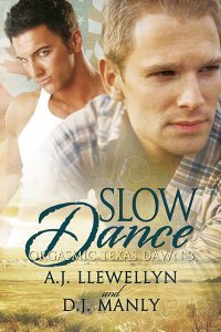 Review: Slow Dance by A.J. Llewellyn and D.J. Manly