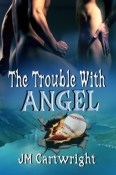 trouble with angel