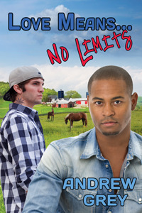 Review: Love Means… No Limits by Andrew Grey