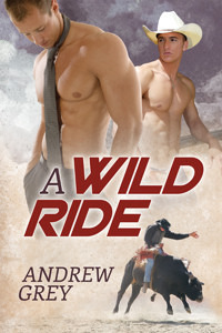 Review: A Wild Ride by Andrew Grey