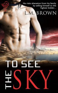 Review: To See the Sky by L.M. Brown