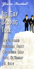 big gay wedding tour